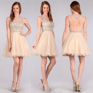 My Fashion 1633 Champagne Dress 3XL